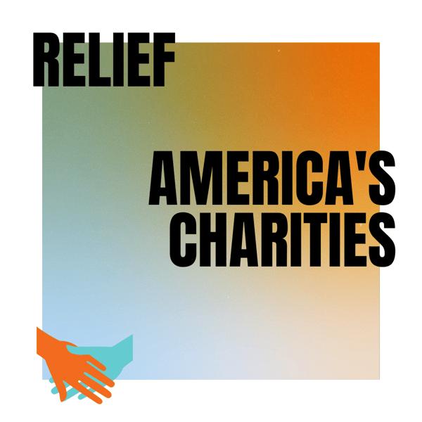Web Depot Newsletter 05.02 Americas Charities